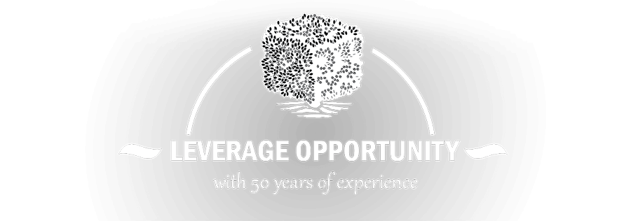 leverage-opportunity-my-size2